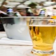 The Wilson Beer Fest