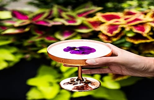 City Guide NY Features Refinery Rooftop in Booze, Babes, & Brunch - International Women's Day Event
